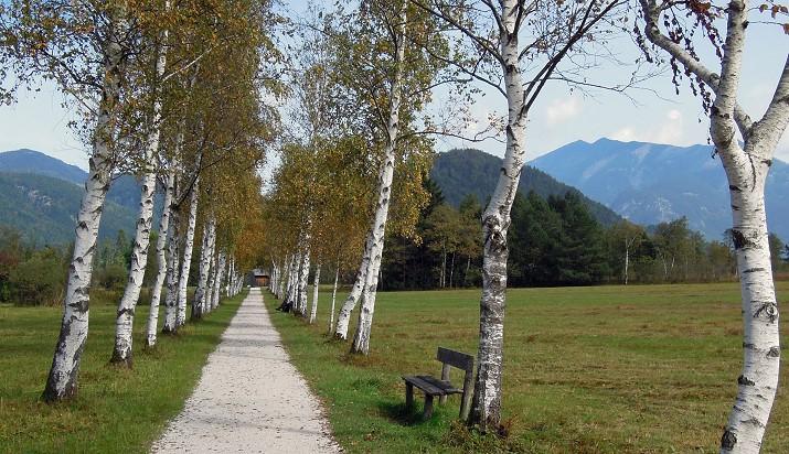 Pension Ebner, St. Gilgen am Wolfgangsee